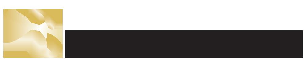 The Bristol Logo